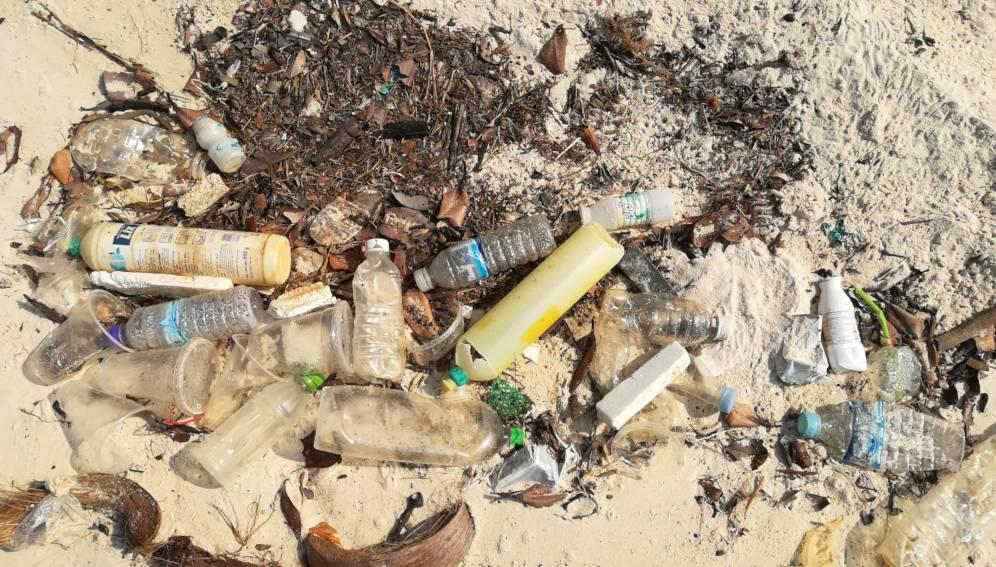 Manglares del Caribe colombiano contaminados por microplásticos