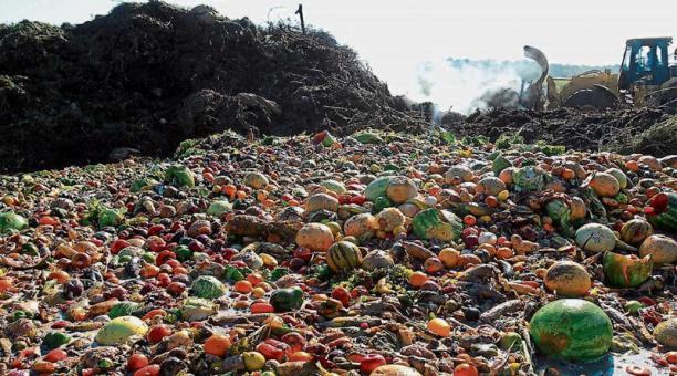 La FAO busca reducir la pérdida y el desperdicio de alimentos