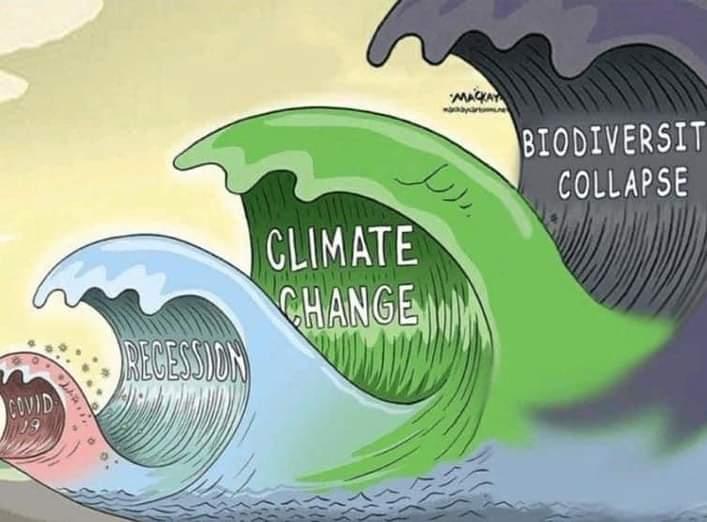 """""""El COVID-19 no es una amenaza existencial comparable al cambio climático, las armas nucleares o la desigualdad"""""""