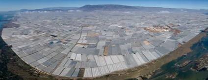 Residuos de una agricultura bajoplástico, porItahisa Chávez Santana,Universidad de Las Palmas de Gran Canaria