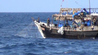 Los botes fantasmas asi opera en aAsia la mayor flota de pesca ilegal del mundo