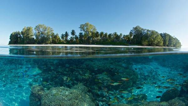 Emisiones de carbono podrían añadir 38 centímetros al nivel del mar