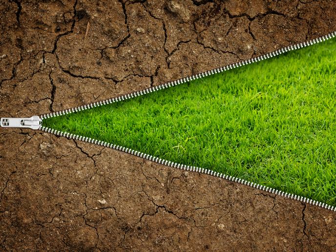 N.º 96 OCTUBRE 2020 NÚMERO ESPECIAL Suelo y sostenibilidad: nuevas bazas para la agricultura europea
