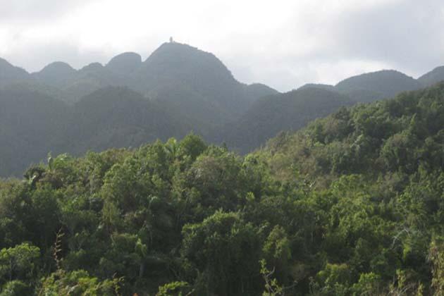 Nuevos hallazgos en el punto más alto del Macizo Guamuhaya Tomado de ACN