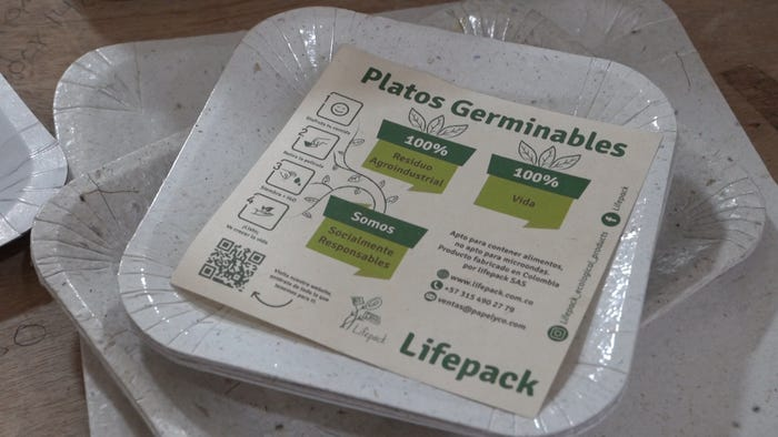 These biodegradable plates made from pineapples will sprout if you plant them in soil