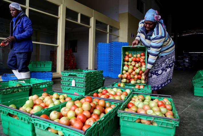 La FAO presento el Año Internacional de las Frutas y Verduras (2021) de las Naciones Unidas